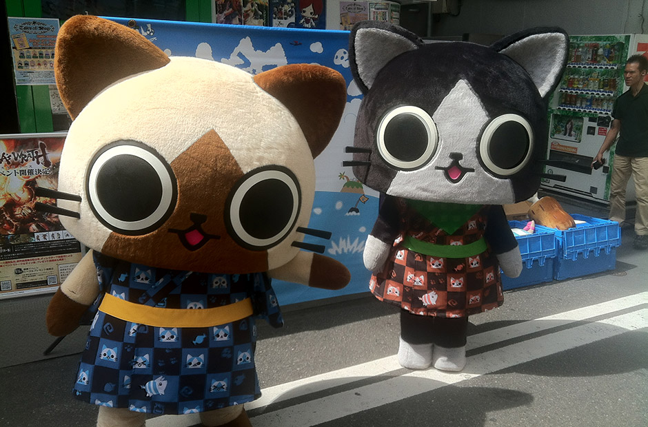 Cat costumes outside of shops in Akihabara