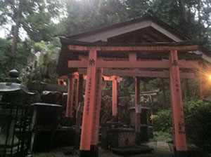 more Torii at a shrine
